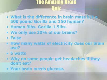 The Amazing Brain Quiz What is the difference in brain mass b/t a 500 pound Gorilla and 150 human? Human 3lbs. Gorilla 1.5lbs. We only use 20% of our brains?