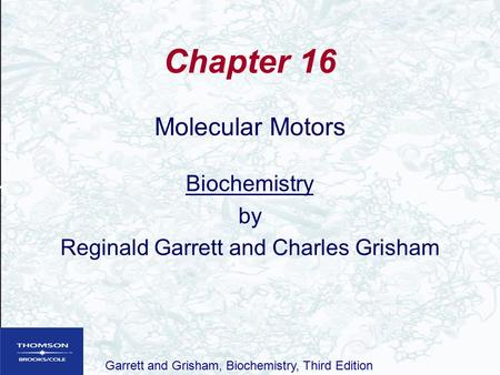 1 Chapter 13 Acetylcholine Copyright 2012 American