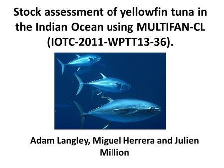 Stock assessment of yellowfin tuna in the Indian Ocean using MULTIFAN-CL (IOTC-2011-WPTT13-36). Adam Langley, Miguel Herrera and Julien Million.