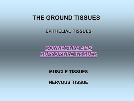 THE GROUND TISSUES EPITHELIAL TISSUES CONNECTIVE AND SUPPORTIVE TISSUES MUSCLE TISSUES NERVOUS TISSUE.