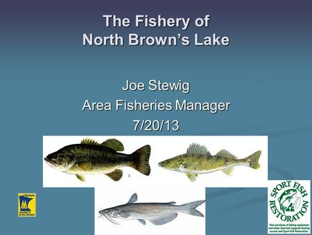 The Fishery of North Brown's Lake Joe Stewig Area Fisheries Manager 7/20/13.