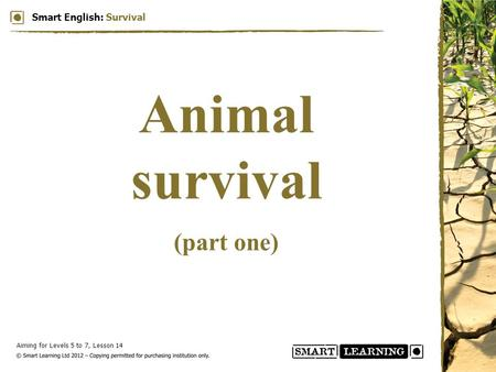 Aiming for Levels 5 to 7, Lesson 14 Smart English: Survival Animal survival (part one)