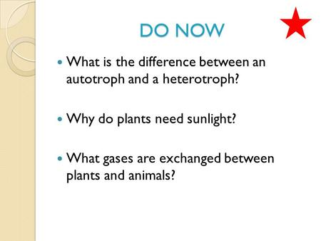 DO NOW What is the difference between an autotroph and a heterotroph? Why do plants need sunlight? What gases are exchanged between plants and animals?