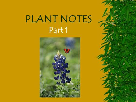PLANT NOTES Part 1 Plant Diversity  Plants are members of the Kingdom ______.  They are classified as eukaryotic organisms that have cell walls made.