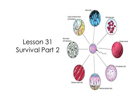 Lesson 31 Survival Part 2. In our last lesson we learned that some living things are unicellular and some are multicellular.