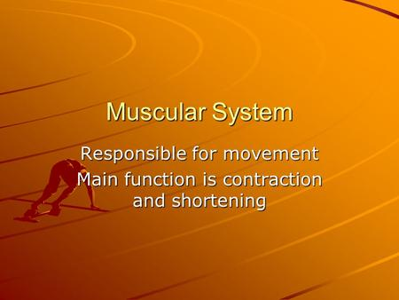 Responsible for movement Main function is contraction and shortening
