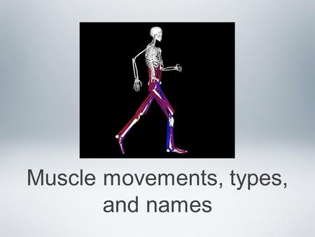 Muscle movements, types, and names. Types of body movements Every one of our our 600+ skeletal muscles is attached to bone or to other connective tissue.