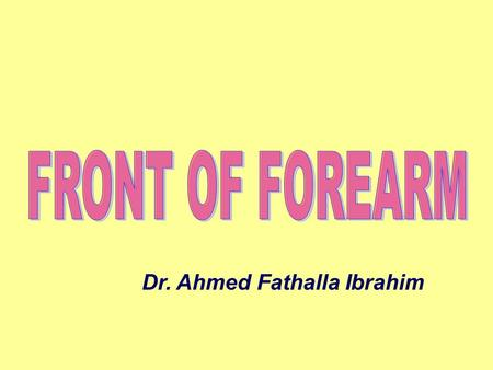 Dr. Ahmed Fathalla Ibrahim. MUSCLES OF FRONT OF FOREARM SUPERFICIAL GROUP (5)SUPERFICIAL GROUP (5) From lateral to medial: 1.Pronator teres (PT) 2.Flexor.