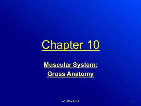 Chapter 10 Muscular System: Gross Anatomy AP1 Chapter 101.