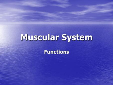 Muscular System Functions. Muscle Tissue Refers to all the contractile tissues of the body. Refers to all the contractile tissues of the body. Skeletal=attached.