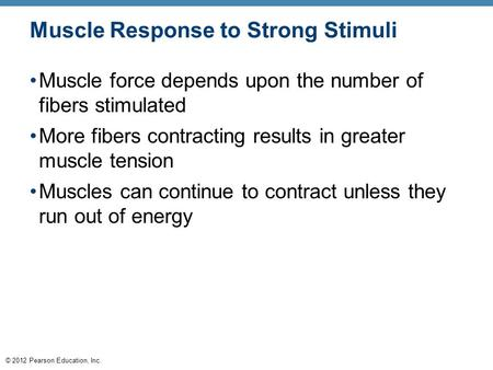 © 2012 Pearson Education, Inc. Muscle Response to Strong Stimuli Muscle force depends upon the number of fibers stimulated More fibers contracting results.