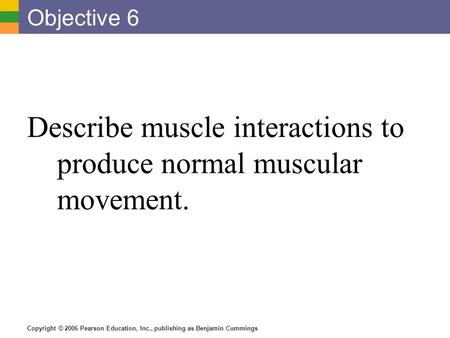 Copyright © 2006 Pearson Education, Inc., publishing as Benjamin Cummings Objective 6 Describe muscle interactions to produce normal muscular movement.