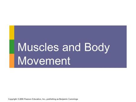 Copyright © 2006 Pearson Education, Inc., publishing as Benjamin Cummings Muscles and Body Movement.