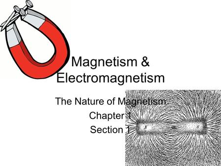 Magnetism & Electromagnetism The Nature of Magnetism Chapter 1 Section 1.