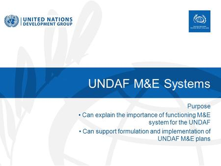 UNDAF M&E Systems Purpose Can explain the importance of functioning M&E system for the UNDAF Can support formulation and implementation of UNDAF M&E plans.
