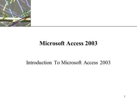 XP 1 Microsoft Access 2003 Introduction To Microsoft Access 2003.