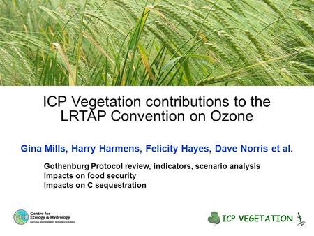 ICP Vegetation contributions to the LRTAP Convention on Ozone Gina Mills, Harry Harmens, Felicity Hayes, Dave Norris et al. Gothenburg Protocol review,