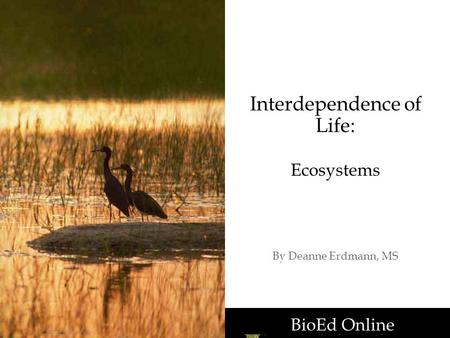 BioEd Online Interdependence of Life: Ecosystems By Deanne Erdmann, MS BioEd Online.
