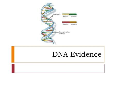 DNA Evidence. You need to know  What is DNA.  What is the purpose of DNA.  Where is DNA located in the cell.  What are some sources of DNA at a crime.