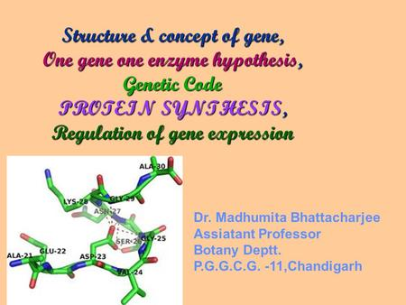 Structure & concept of gene, One gene one enzyme hypothesis, Genetic Code PROTEIN SYNTHESIS, Regulation of gene expression Dr. Madhumita Bhattacharjee.