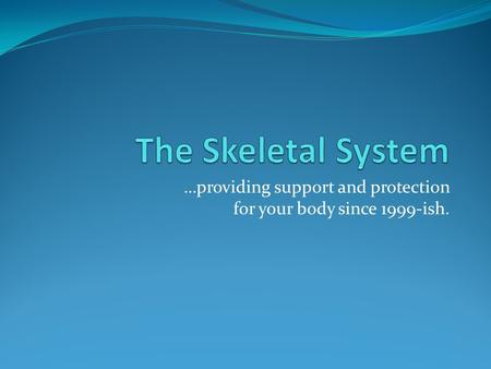 …providing support and protection for your body since 1999-ish.