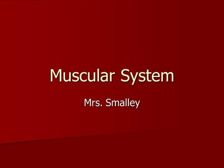 Muscular System Mrs. Smalley. Function of the Muscular System The muscular system enables movement of your body and internal organs. The muscular system.