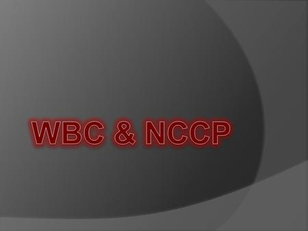  Outline the new NCCP  Outline WBC & the NCCP –proposed  What we have done to date  Where are the next steps  Unknowns.