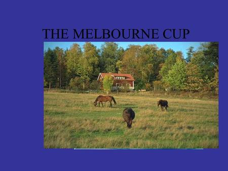 THE MELBOURNE CUP At the racecourse! Since 1861 people have gathered at Flemington Racetrack on the first Tuesday in November to watch the Melbourne.
