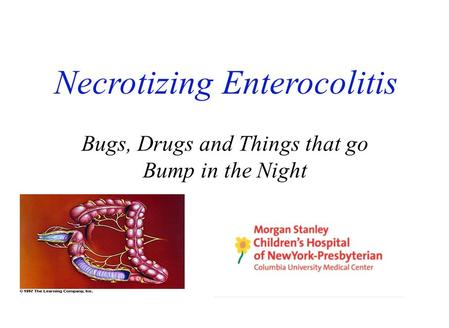 Necrotizing Enterocolitis Bugs, Drugs and Things that go Bump in the Night.