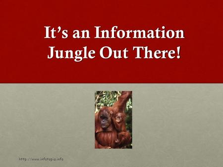 It's an Information Jungle Out There!