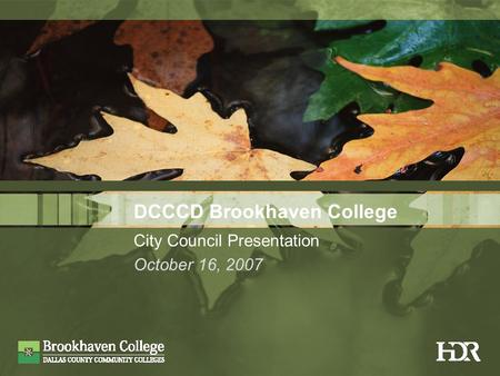 DCCCD Brookhaven College City Council Presentation October 16, 2007.