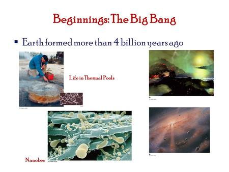 Beginnings: The Big Bang  Earth formed more than 4 billion years ago Nanobes Life in Thermal Pools.