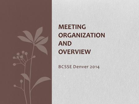 BCSSE Denver 2014 MEETING ORGANIZATION AND OVERVIEW.