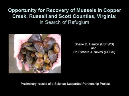 Opportunity for Recovery of Mussels in Copper Creek, Russell and Scott Counties, Virginia: in Search of Refugium Shane D. Hanlon (USFWS) and Dr. Richard.