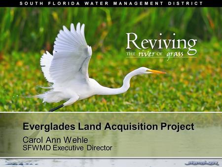 Everglades Land Acquisition Project Carol Ann Wehle SFWMD Executive Director.