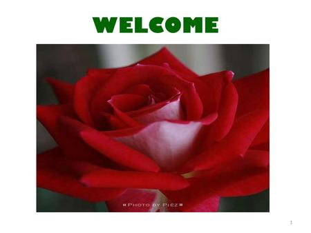 WELCOME 1. Welcome to THE COUNTRY PRESENTATION OF BANGLADESH 2.