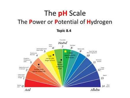 The pH Scale The Power or Potential of Hydrogen Topic 8.4.