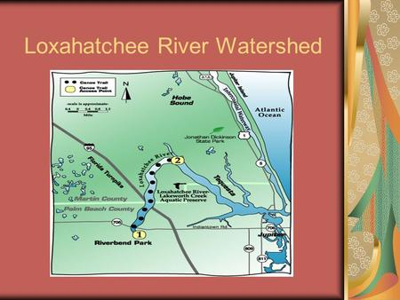 Loxahatchee River Watershed Overview 1 st river in Florida designated as a National Wild & Scenic River 1 st river in Florida designated as a National.