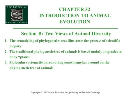 CHAPTER 32 INTRODUCTION TO ANIMAL EVOLUTION Copyright © 2002 Pearson Education, Inc., publishing as Benjamin Cummings Section B: Two Views of Animal Diversity.