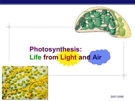 AP Biology 2007-2008 Photosynthesis: Life from Light and Air.