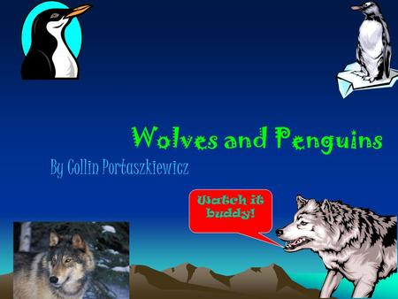Wolves and Penguins By Collin Portaszkiewicz Watch it buddy!