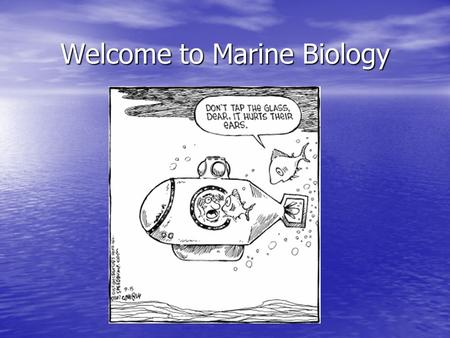 Welcome to Marine Biology