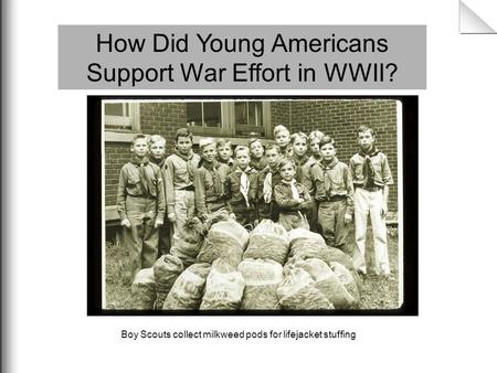 How Did Young Americans Support War Effort in WWII? Boy Scouts collect milkweed pods for lifejacket stuffing.