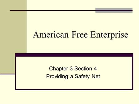 American Free Enterprise Chapter 3 Section 4 Providing a Safety Net.