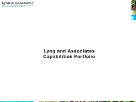 Lyng and Associates Capabilities Portfolio. Overview At Lyng and Associates, all of our efforts, services and final products are directed towards the.