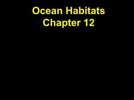 Ocean Habitats Chapter 12. Animals of the Benthos  98% of marine species are benthic  Hydrothermal vents  Rocky shore  Coral reefs.