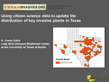 H. Travis Gallo Lady Bird Johnson Wildflower Center at the University of Texas at Austin Using citizen science data to update the distribution of key invasive.