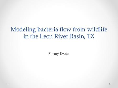 Modeling bacteria flow from wildlife in the Leon River Basin, TX Sonny Kwon.