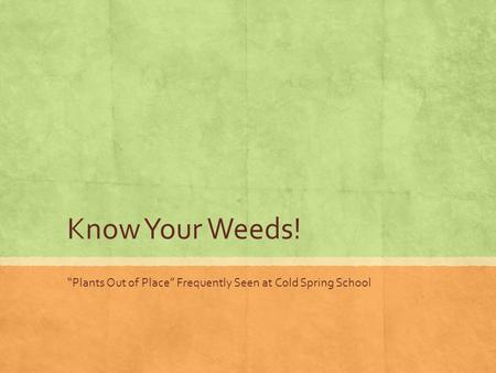 "Know Your Weeds! ""Plants Out of Place"" Frequently Seen at Cold Spring School."