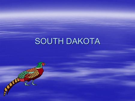 SOUTH DAKOTA. HISTORY  There are some Indian tribes in South Dakota including the Sioux and Oglala and others.  The first people in South Dakota were.